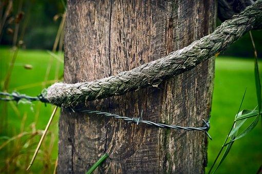 wood-1767147__340.jpg